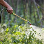 Gardening and Pest Control Exposed